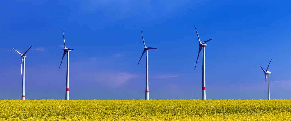 Coopératives éoliennes