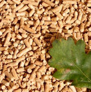 Composés de déchets de bois, les pellets peuvent alimenter différents appareils de chauffage.